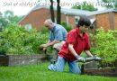 Det er aldrig for sent at gøre noget ved sin have